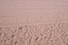 Песочек время от времени ровняют