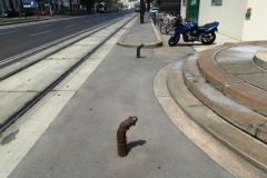 Тротуары ровные. Что за штуки торчат? Не знаю