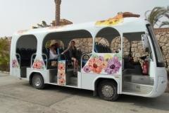 Вот такой автобус нас возил на пляж. Тот пляж, который видно из окна