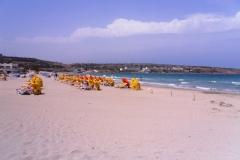 Такие пляжи тоже есть