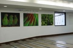Небольшая выставка