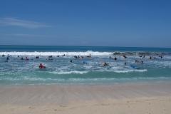 Плотность серферов в воде потрясает