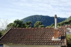 Старые крыши