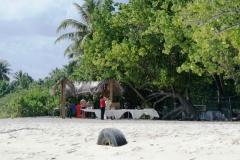 Мальдивы - очень зеленая страна