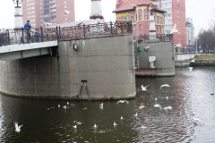 Россия, Калининград