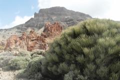 Испания, Тенерифе, вулкан Тейде