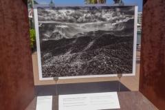 Выставка Génesis на набережной