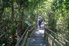 Аргентина, Национальный парк «Игуасу»