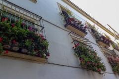 Испания, Херес-де-ла-Фронтера