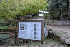 Сардиния, Foresta di Montes