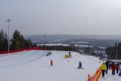 Этап кубка мира по ски-кроссу