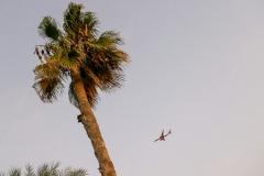 Самолет скоро приземлится