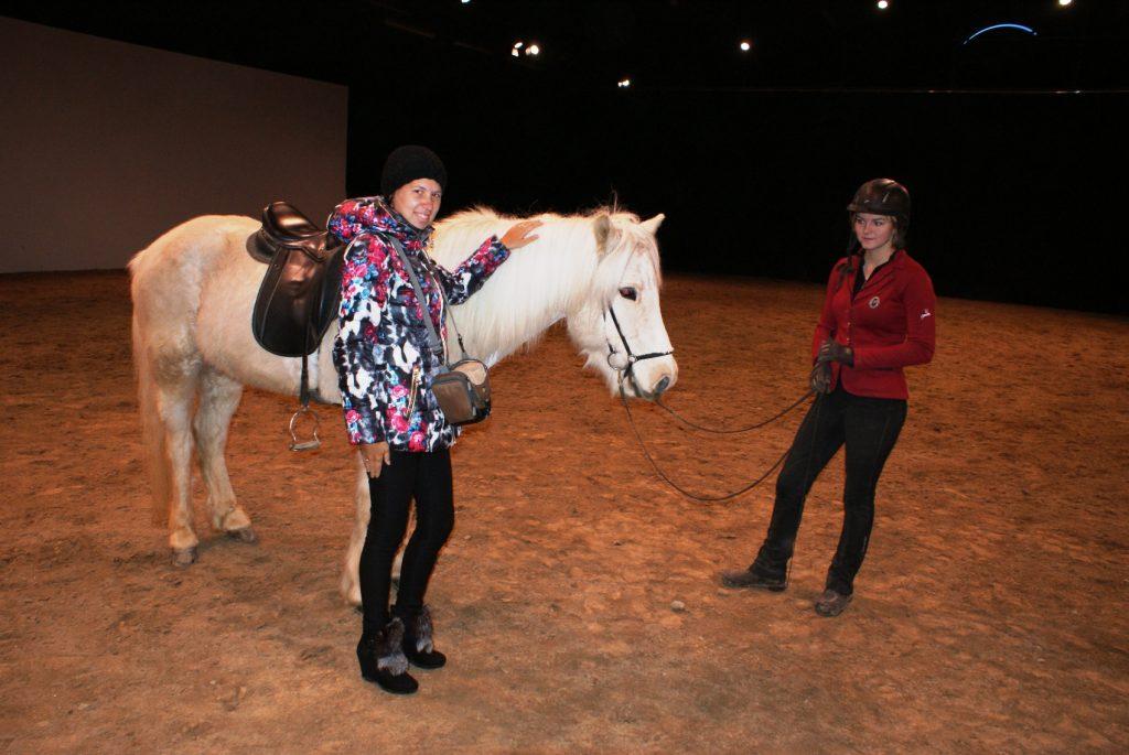 Ферма с чудесными лошадками