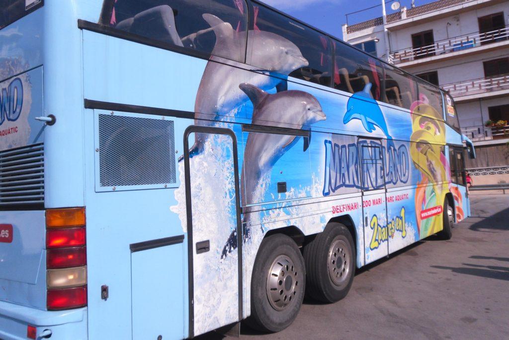 Автобус в аквапарк Marineland