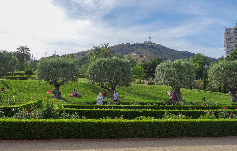 Парк довольно большой: есть место для посиделок, прогулок, отдыха... Кто-то даже загорает