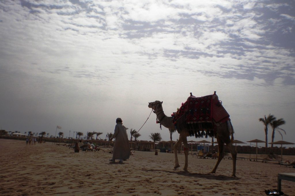 Египет - как я его себе представляла до поездки
