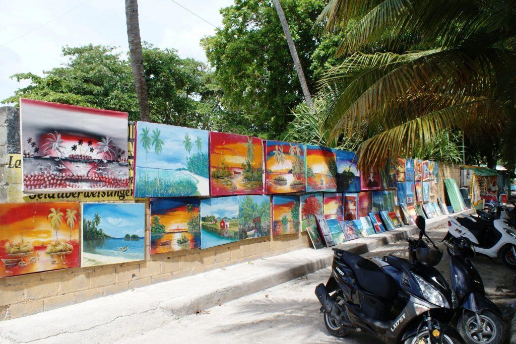 Еще виды Доминиканы