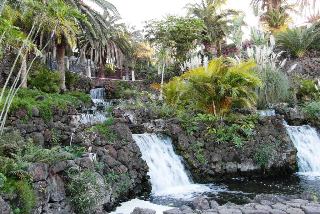 Приятный парк, на Тенерифе много зелени