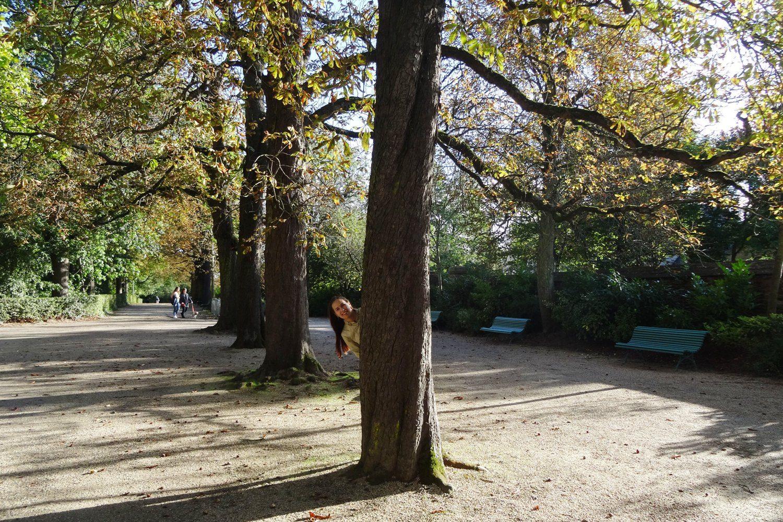 Можно просто погулять среди деревьев