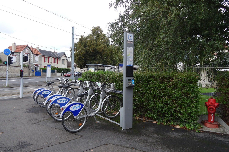 Много велосипедистов, можно и напрокат взять