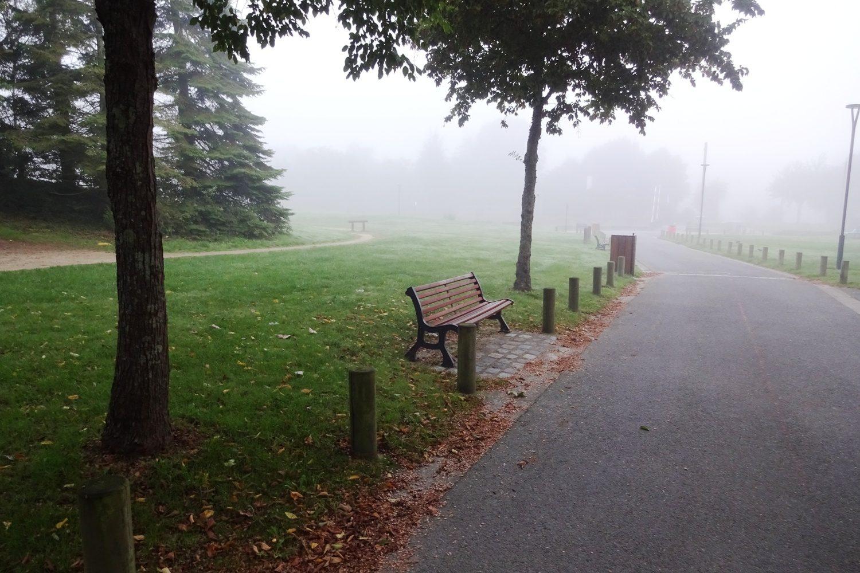 Кажется, что сейчас заблудишься в этом тумане. И уже ощущается осень...