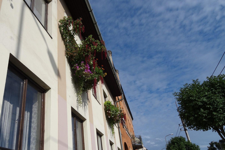 Обычные дома нередко украшают цветами