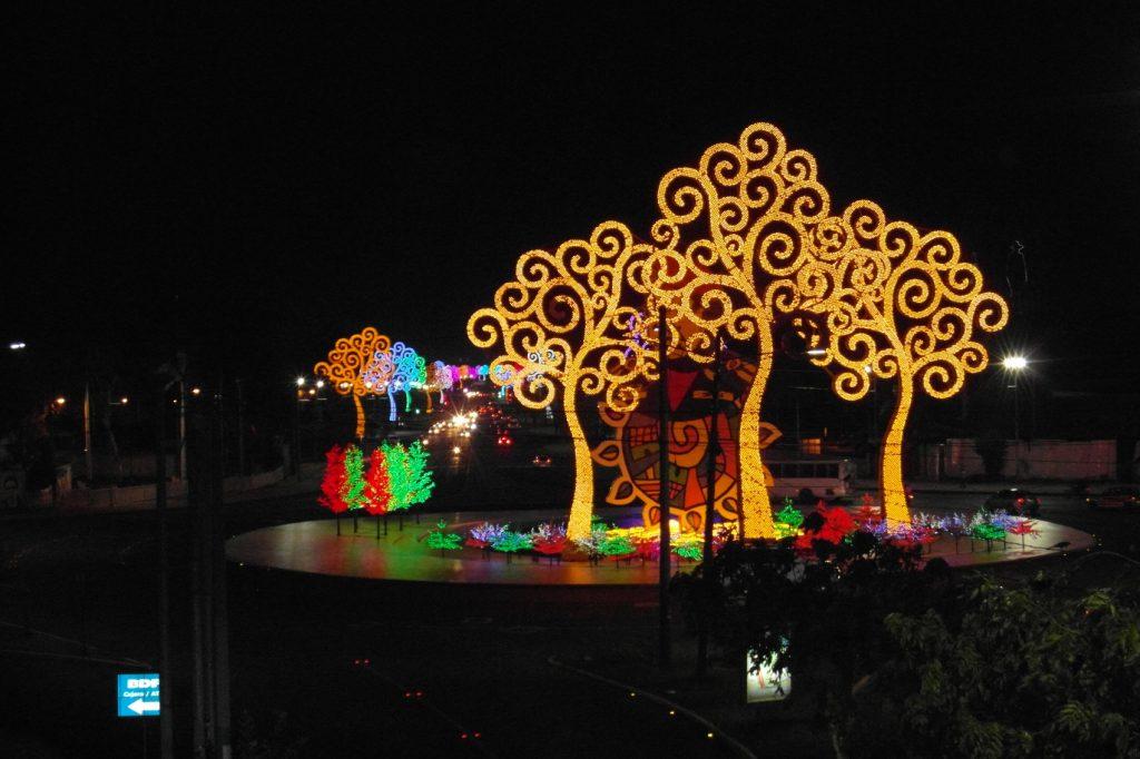 Потрясающие деревья в Манагуа