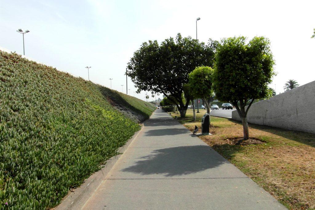 Дорога из аэропорта. Еще 5 минут пешком - и город
