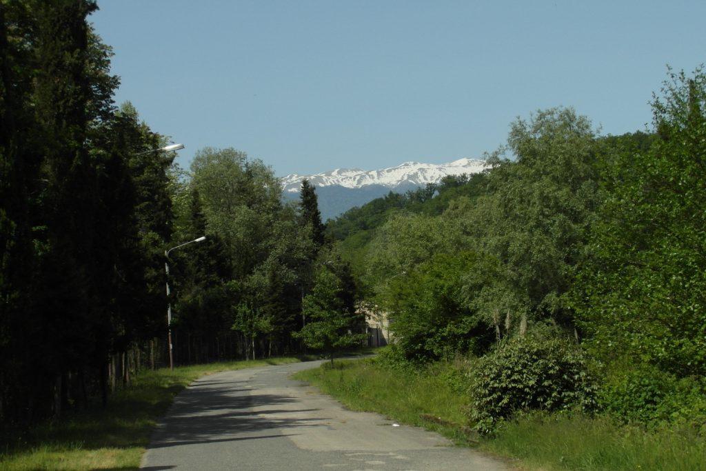 И горы в снегу на дальнем плане