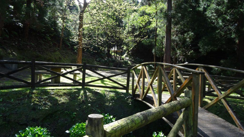 Рядом небольшой парк... Тихий и таинственный