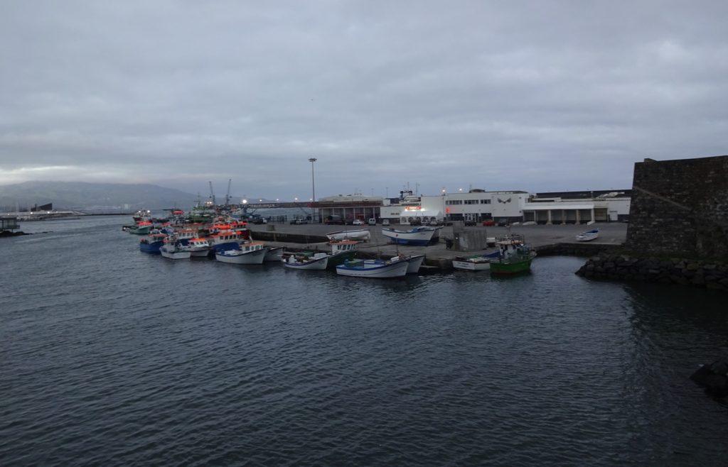 Виды на порт