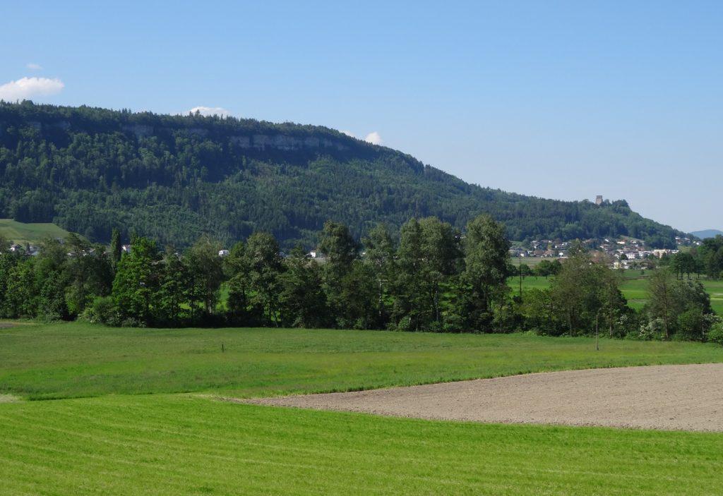 Очень классно бродить по окрестностям - зелено и пусто