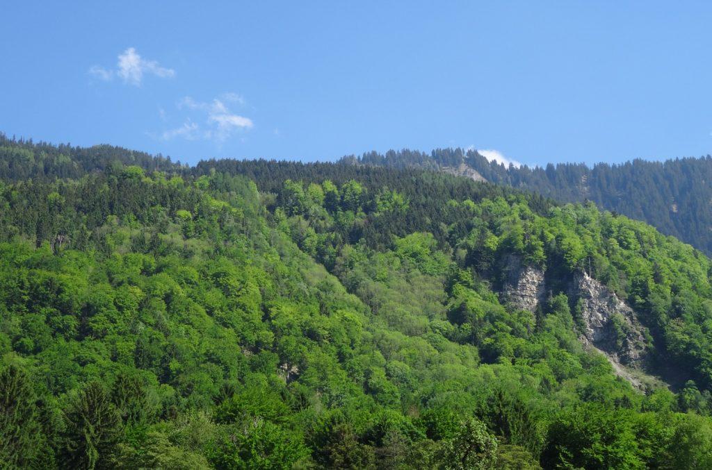 Обожаю горы