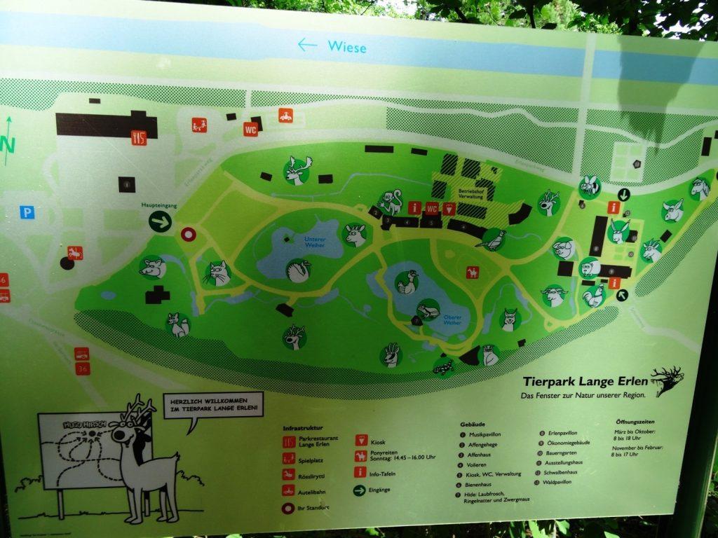 Карта на входе