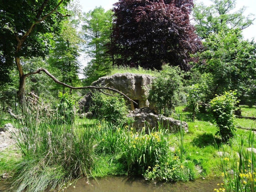 Красивый пруд и окрестности