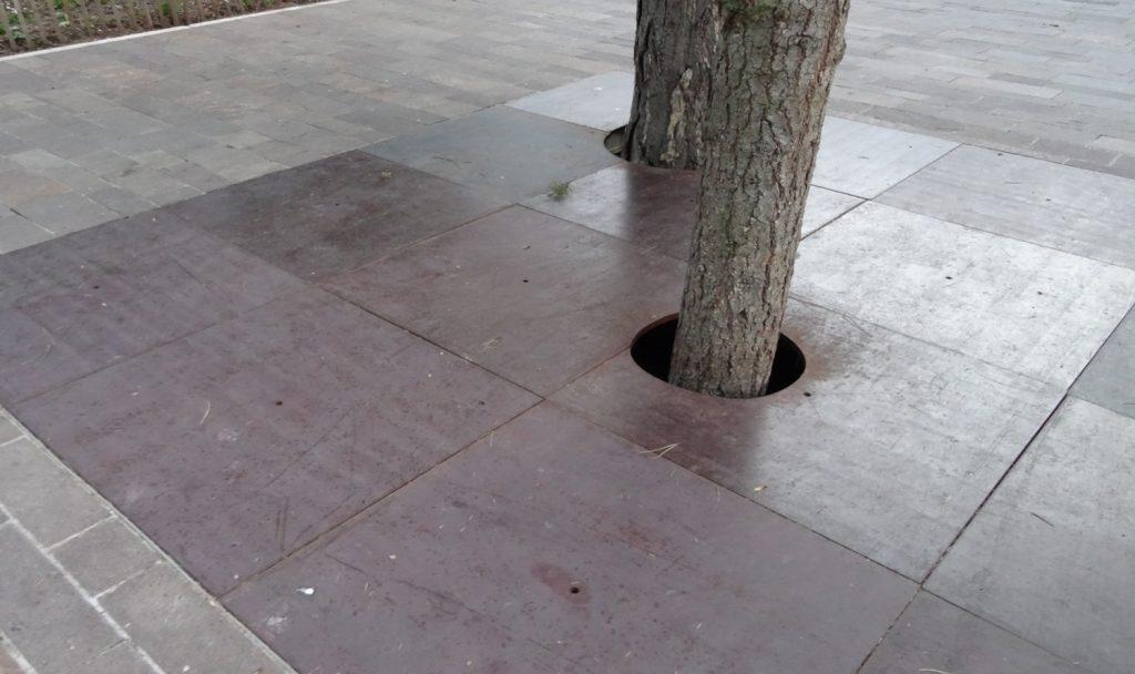 И какая забота о деревьях! Не вырубать, а просто окружать специальными плитами