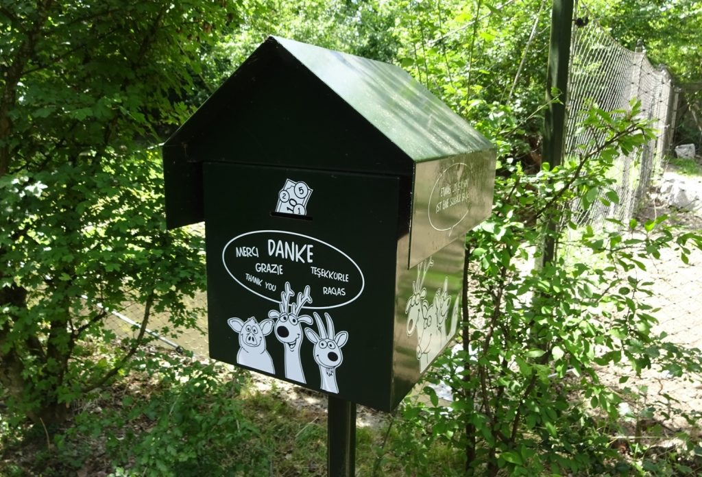 Парк бесплатный, но можно оставить пожертвование