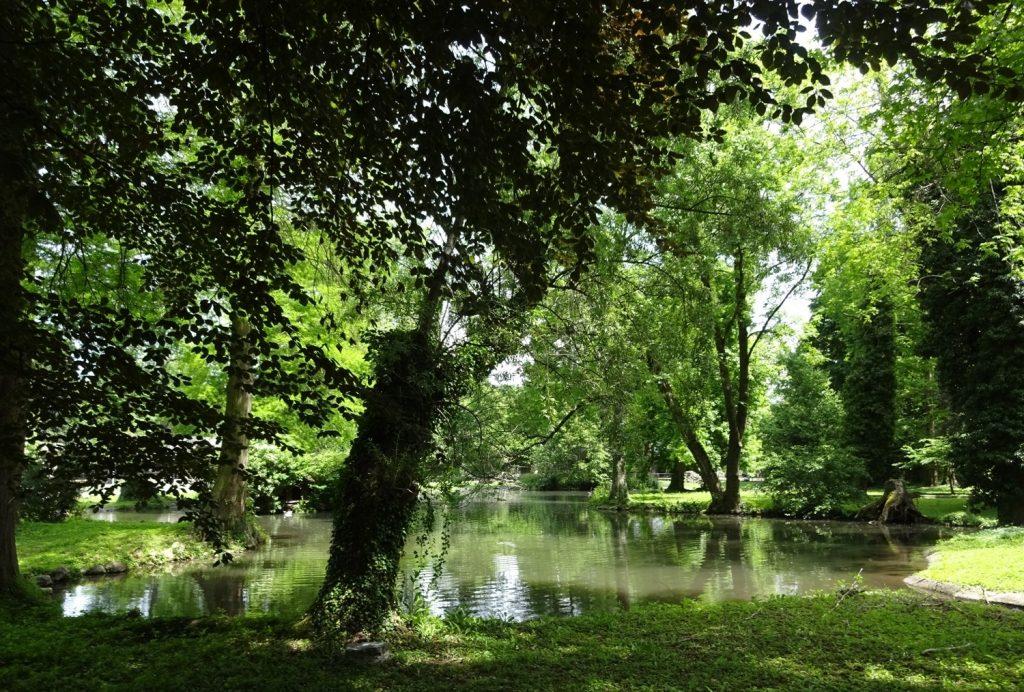 Очень зеленый парк