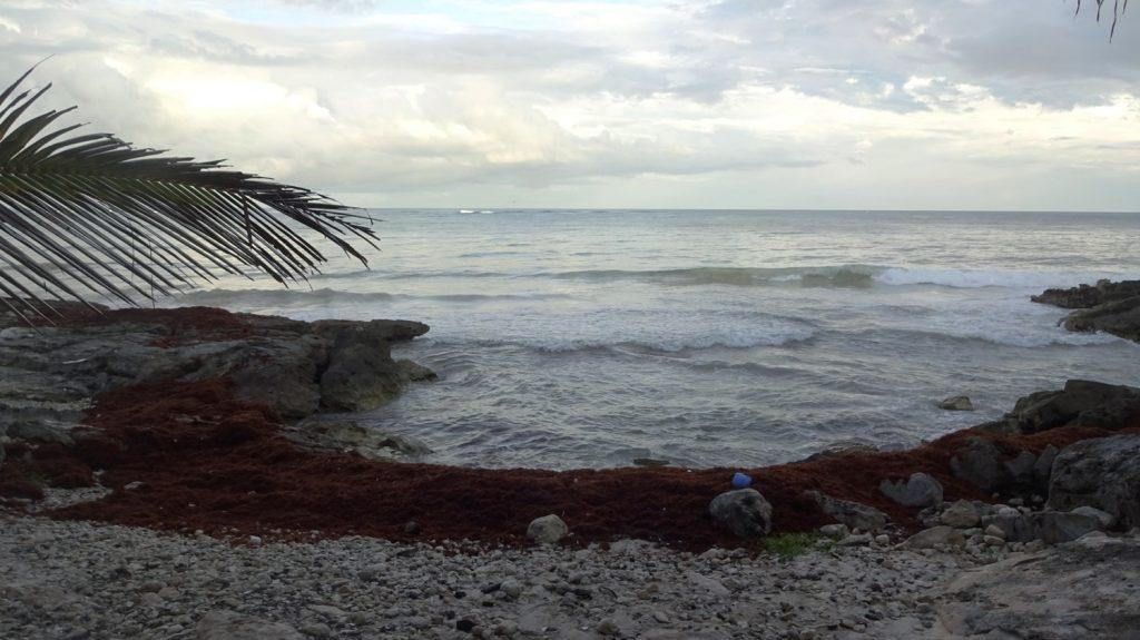 Вдали от ухоженных пляжей