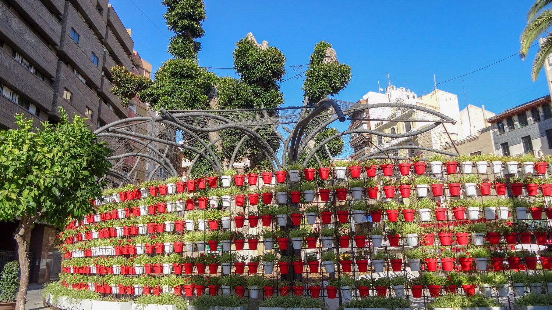 Одна из достопримечательностей площади Санто Доминго - цветочные горшки, которые создают белую надпись на красном фоне. Чтобы увидеть целиком, надо ходить вокруг