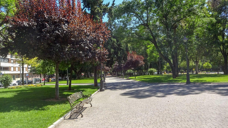 В парке Виктория