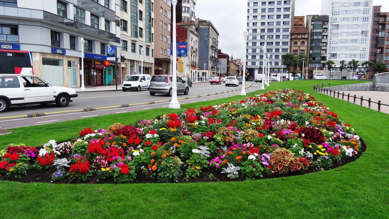 Яркие цветы на фоне спокойных красок в архитектуре