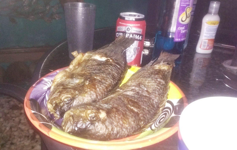 Рыба, которую на замораживали, а потом приготовили на решетке, - вообще не то же самое, что наша рыба из магазина, пожаренная на сковороде