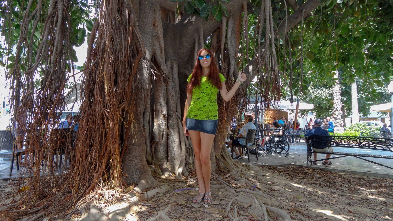 Если прятаться в тени дерева - то такого!