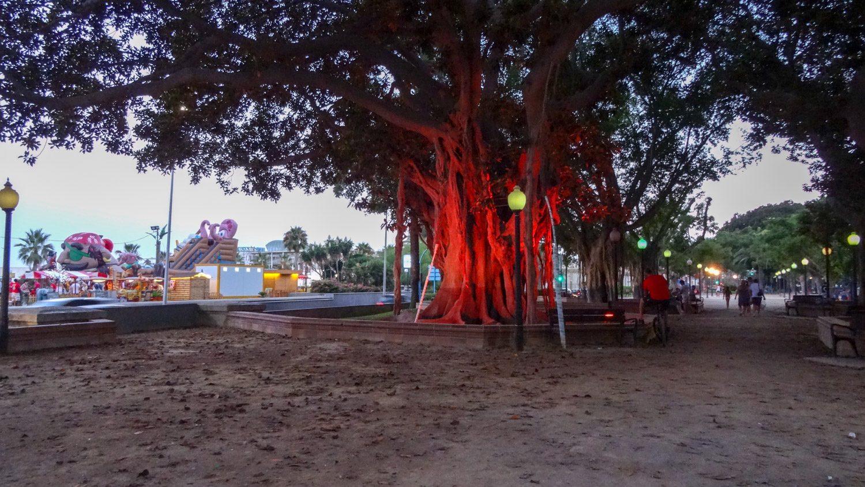 Parque de la estacion de autobuses. Думаю, можно не переводить. Несмотря на название - очень симпатичный парк