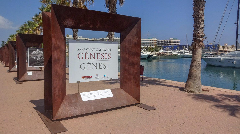 На набережной сейчас проходит выставка Génesis. Фотографы предоставили снимки из разных уголков планеты (Россия тоже была)
