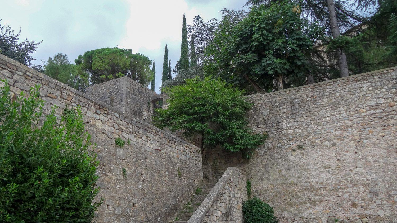 Шикарные деревья. Иногда кажется, что такие же старые, как эти стены, но это не так, конечно