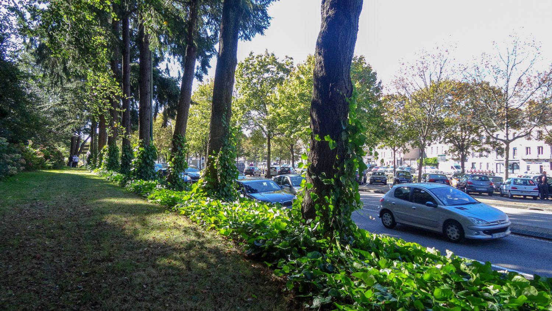 Даже там, где нужно идти вдоль дороги, прогулка приятная: под деревьями и по мягкой листве