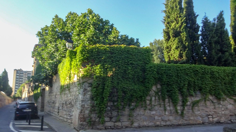 Старые заросшие стены