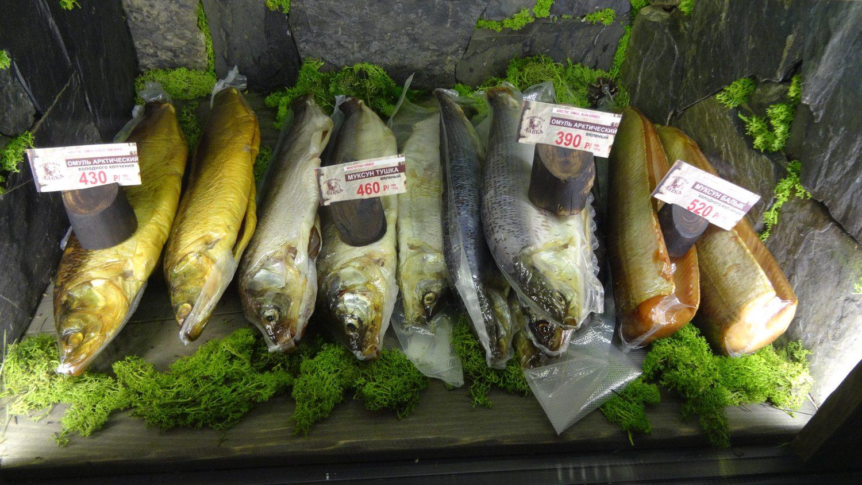 Обожаю рыбу